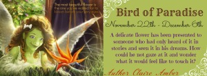 Bird of Paradise Banner