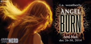 Angel_Burn_Tour_Banner